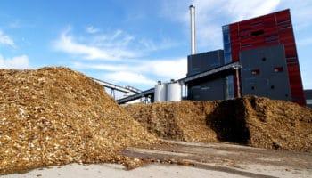 Mieux mobiliser la biomasse : le grand défi français !