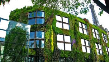 Maison et nature font bon ménage