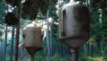 Biomimétisme : Des cabanes imaginées pour ressembler à une partie de l'arbre
