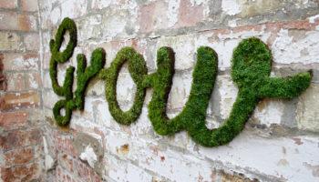 Un projet vert : Les graffitis en mousse