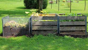 Le compost chez soi, explication et conseils