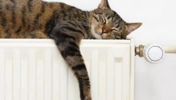 Faire le bon choix en matière de chauffage et production d'eau chaude