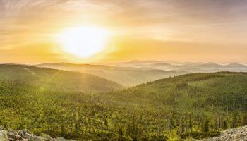 Ma maison bois : une construction éco-responsable et durable