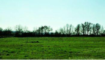 Terrain à Saint Sauveur d'Aunis 17540 439m2 52680 € - CHERV-18-11-23-4