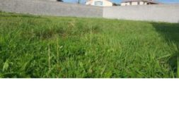 Terrain à Muret 31600 532m2 101000 € - PCR-19-02-19-5