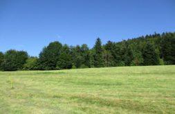 Terrain à Bourg-des-Comptes 35890 403m2 48000 € - ABRE-21-03-15-2
