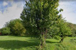 Terrain à Goven 35580 465m2 76000 € - ABRE-21-03-15-7
