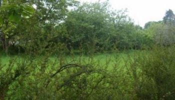 Terrain à Saint-Marcel 56140 632m2 30336 € - BS-21-04-14-2