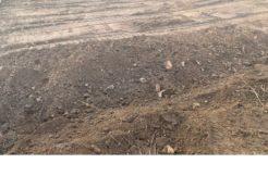 Terrain à Lormont 33310 477m2 185500 € - CDUS-20-02-05-2